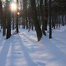 snowy heckingen mountain by eddiebotha