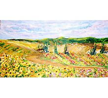 Blooming Fields Photographic Print
