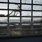 """""""GLASS BRICK WINDOW"""" by waddleudo"""
