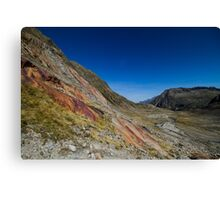 Red Stone Canvas Print