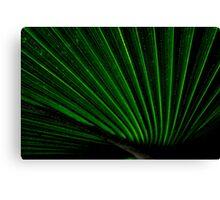 Laser Palm Canvas Print