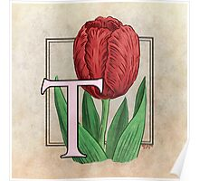 T is for Tulip Poster