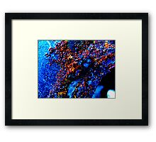SEA HUNT Framed Print
