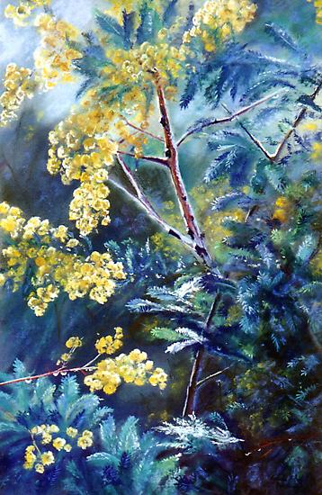 Cootamundra Wattle by Lynda Robinson