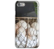 Eggs in the basket iPhone Case/Skin