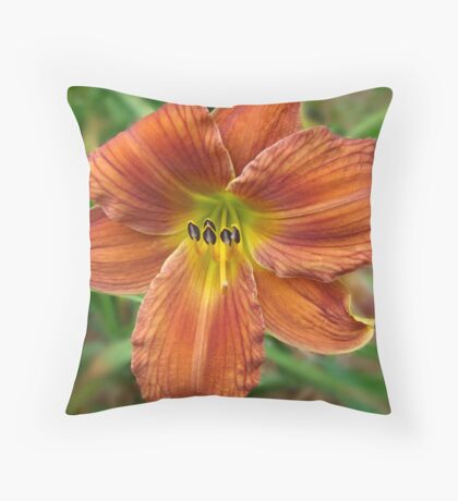 Day Dreamer V Throw Pillow