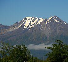 Calbuco Volcano by Laurel Talabere