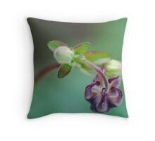 Magenta Columbine in Bloom Throw Pillow