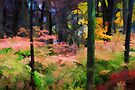 """A View of the Woods in Fall by Christine """"Xine"""" Segalas"""