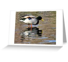 (on stilts with waders) Greeting Card