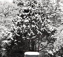 creepy van in snowstorm by KreddibleTrout