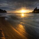 Into the sun, Piha by Michael Treloar