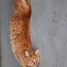 stretch by katpartridge