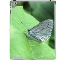The Holly Blue iPad Case/Skin