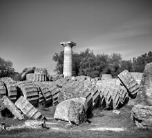 Part of Τemple of Zeus. Ancient Olympia / Greece by Stavros