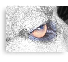 'Wise One' Canvas Print