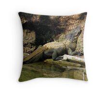 Alligator Smile Throw Pillow