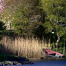 Isle of Skye - Boat and reeds. by Jean-Luc Rollier