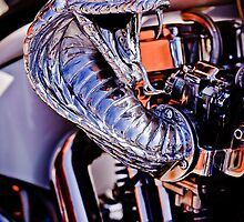 Cobra Breath by Charles Dobbs Photography