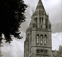 Natural History Museum, London by Mira Joshi