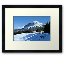 The Secluded Small Holding Framed Print