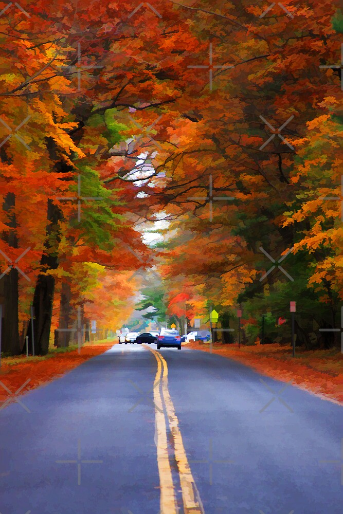 "Autumn Road by Christine ""Xine"" Segalas"