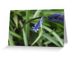 Bleu Belle Greeting Card