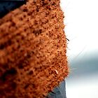 Ropes by sudhirnair
