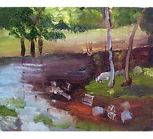 Landscape lesson Photographic Print