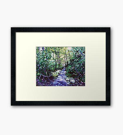 'The Glen Burney Trail' (Blowing Rock, NC) Framed Print