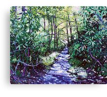 'The Glen Burney Trail' (Blowing Rock, NC) Canvas Print