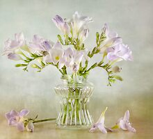 Freesias by Mandy Disher