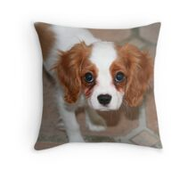Yes, I am cute! Throw Pillow