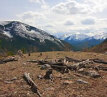 View the Rockies by zumi
