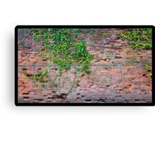 Decaying brickwall Canvas Print