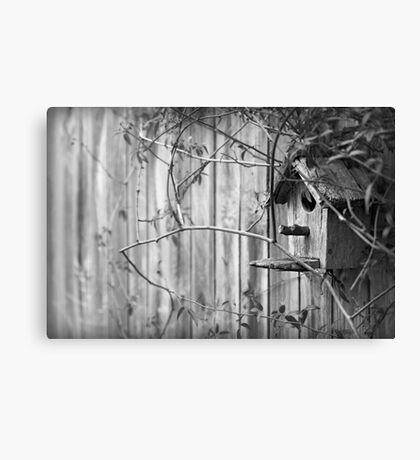 Farghaly Design Australia - photography  Canvas Print