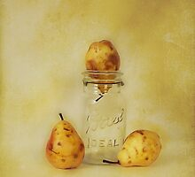 Canning Time by janetlee