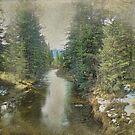 Up Creek by kayzsqrlz