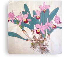 Orchids with roots  Metal Print