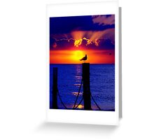 Front Row Seat At Sunset Greeting Card