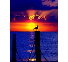 Front Row Seat At Sunset Photographic Print