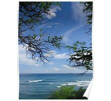 Trees and the ocean Poster