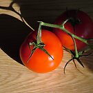 Bright Red Jersey Tomato by Frank Nave