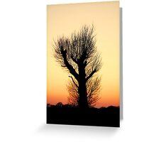 """THE HAIRY WAVING TREE"" Greeting Card"