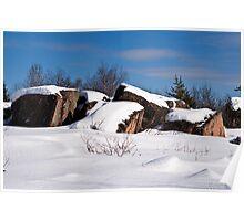 Snowshoe Adventures Poster