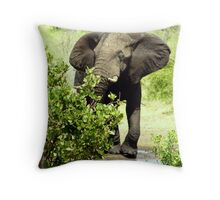 Watering hole - Kruger National Park Throw Pillow