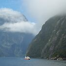 Boat among the Mountains of Milford sound by Alison Murphy