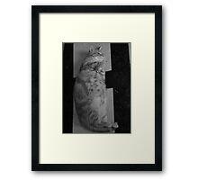 fantomas Framed Print