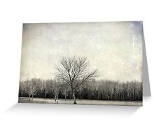 Tree in Texture Greeting Card