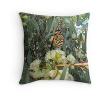 'SIPPING NECTAR'!  Monarch on Gum Blossom. Throw Pillow